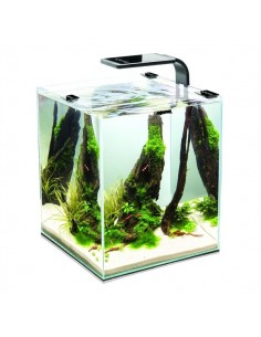 Aquael Leddy Smart 6W Plant- Black - 2103571