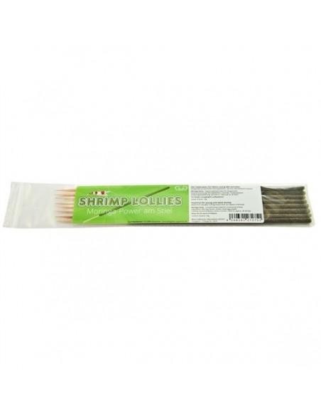 GlasGarten Shrimp Moringa sticks 8 Uni - 2104228