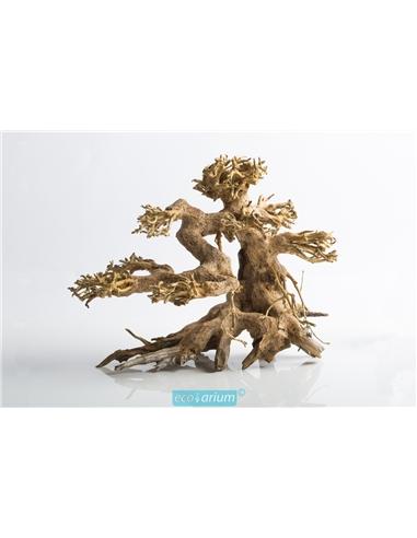 Bonsai 100% natural - 2102826