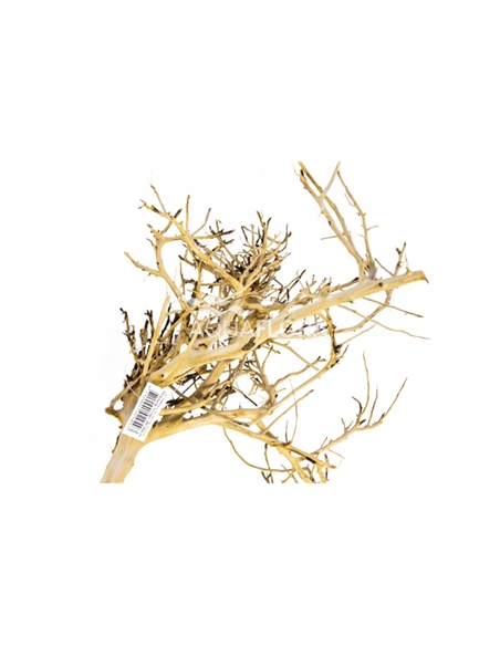 Scaping Twigs S 20-30cm Uni - 2104523