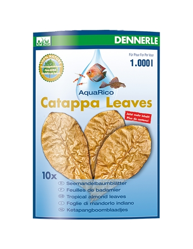 Folhas Catappa Leaves Almond Leaves 10 Uni. - 2102553