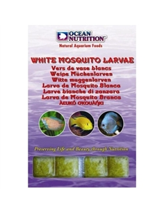 Larva de Mosquito Branca em Blister 100Gr - 2104044