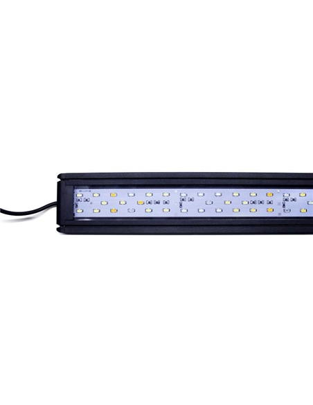 Iluminação Led PP 3120 - 2104836